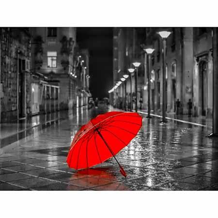 Алмазная вышивка (живопись) Зонтик